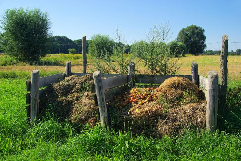 3.pila compost