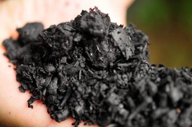 Biochar producido a partir de restos de poda